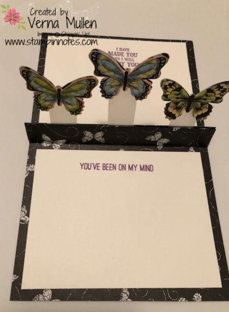Butterflyfront1
