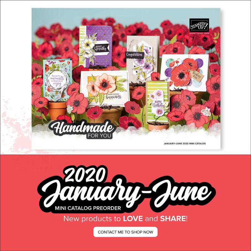 2020 mini catalog cover