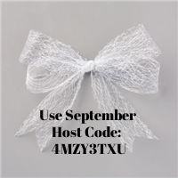 Sept 2020 Host Code Metallic Mesh Ribbon