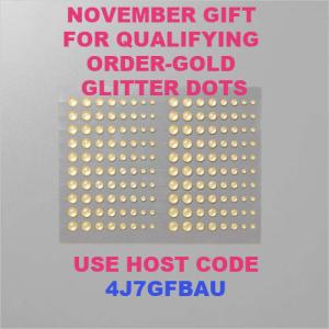 Nov 2020 host code